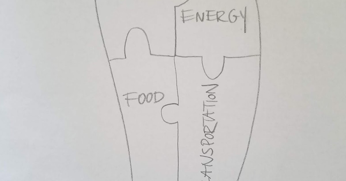 Franklin Environmental Science: My Ecological Footprint