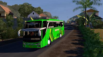 Livery Rimba Raya for Jetbus 3+ SHD HINO RK8 Adudu Cvt Diny V1 by Fayaz
