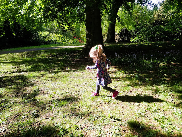A small girl with blonde hair half tied up is running across a patchy area of grass surrounded by leaf covered trees. She is wearing a navy knee length, long sleeved dress with colourful horse characters on it and navy tights. She has bright purple high top trainers with a while sole on.