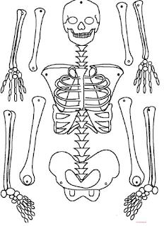 esqueletos colorear, recortar, armar