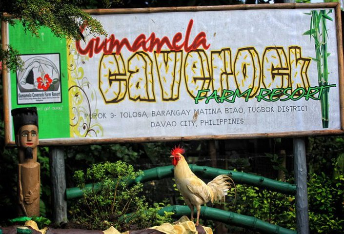 Make It Davao Gumamela Caverock Farm Resort