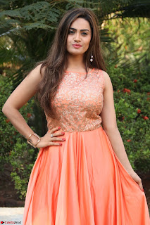 Actress Sakshi in beautiful orange Anarkali Dress Spicy Pics    024.jpg