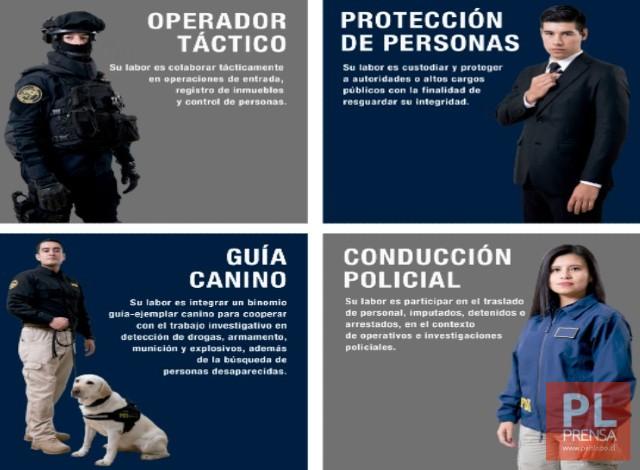 PDI tiene abiertas las postulaciones para el curso Asistente Policial