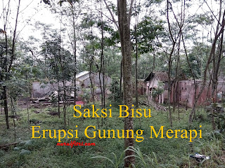 http://www.nurulfitri.com/2016/05/saksi-bisu-erupsi-gunung-merapi.html