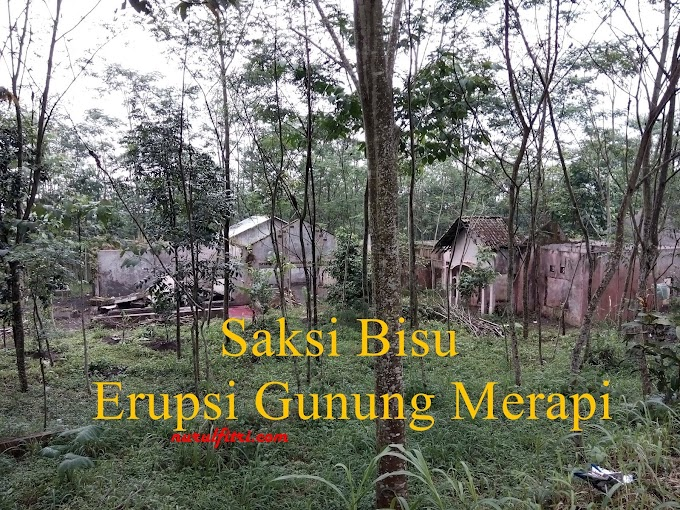 Saksi Bisu Erupsi Gunung Merapi
