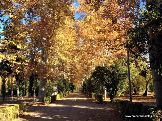 Aranjuez es ideal para ver en Otoño