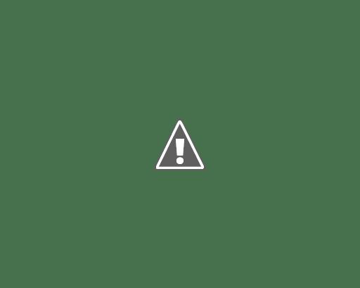 march, mdb, libri il nostro angolo di paradiso, recensione, diritti civili,