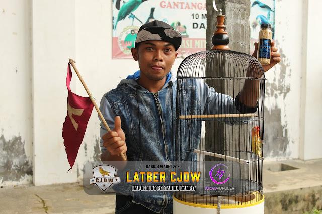 Jawara Lovebird M1 B - Lovebird Kimcil milik Om Sugiri ARK 28 SF
