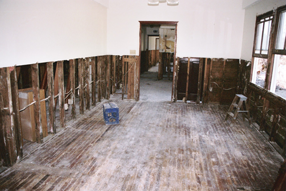 Mold after Water Damage