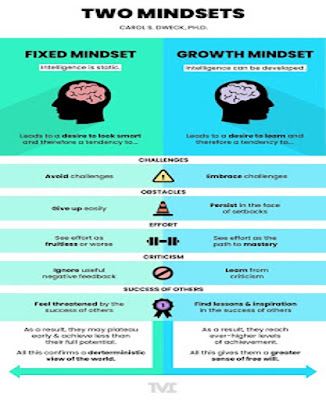 Two mindsets by Richard Gourlay business strategy consultant, Dumfries and Galloway, Scotland, UK, GB