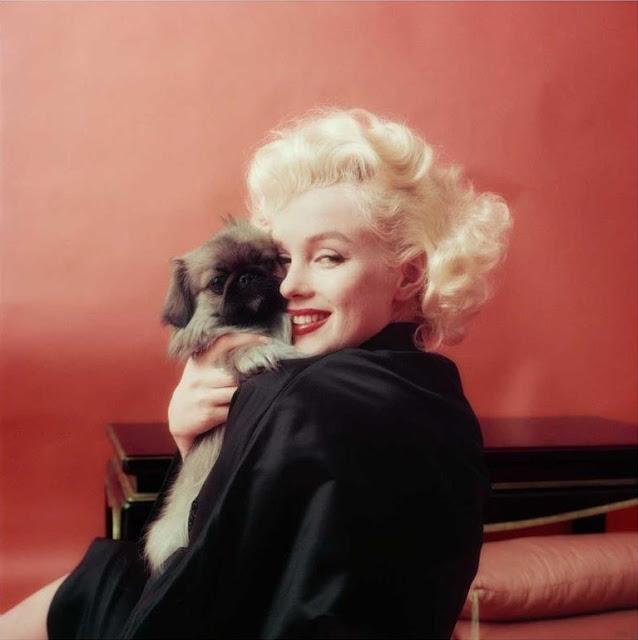 1955. Marilyn Monroe photographed by Milton H. Greene