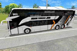 Bus 4 ATJ ALL COLOR