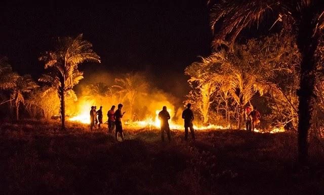 incêndio em uma propriedade rural do senhor Durico, filho do saudoso Fidesmário Macedo conhecido por Lex.