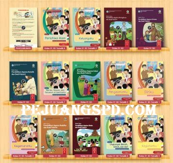 Download  Buku Guru Kurikulum 2013 Revisi 2017 Kelas 1 DS/MI