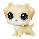Littlest Pet Shop Singles Ginny Junebug (#83) Pet