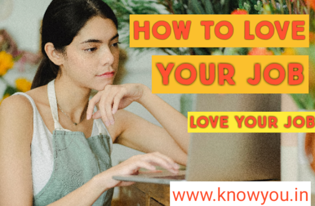How to Love Your Job, Choose a Job You Love, Love Your Job, Best Job 2020.