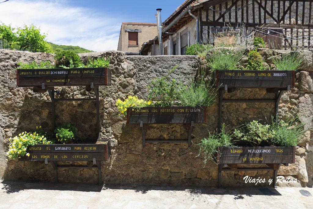 Jardineras de San Martín del Castañar