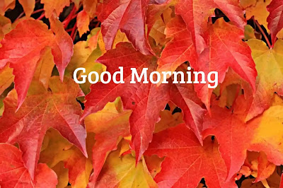 Fall Good Morning Images