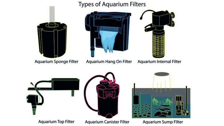 setting up saltwater aquarium