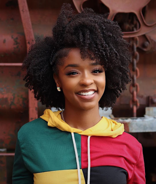 2019 Lovely Natural Hairstyles for Pretty Ladies