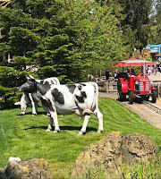 Les tracteurs de la ferme d'Antonin - Nigloland