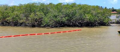Celse instala barreiras de contenção no Rio Sergipe