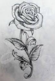 Cara membuat gambar bunga mawar