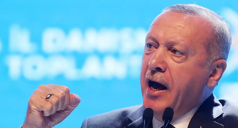 فيديو لأردوغان يثير ضجة... ماذا قال عن نقل داعش إلى سيناء المصرية؟