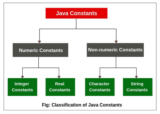 Constants in Java | Types & Examples