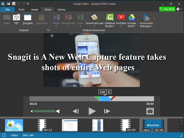 snagit web capture