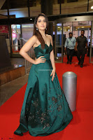 Raashi Khanna in Dark Green Sleeveless Strapless Deep neck Gown at 64th Jio Filmfare Awards South ~  Exclusive 127.JPG