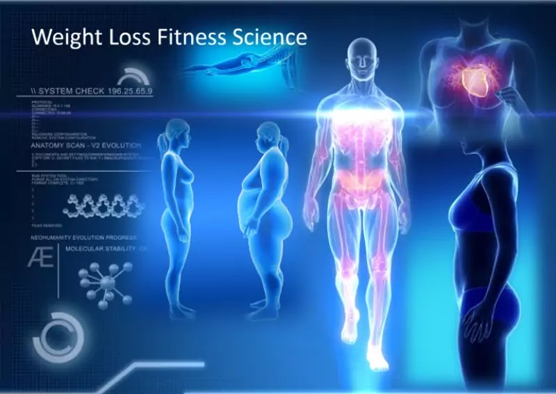Top 10 Weight-Loss Tips That Science Actually Knows Work