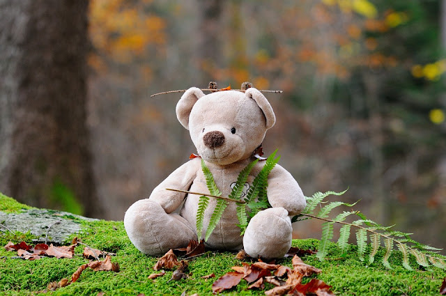 Happy Teddy Bear Day Quotes 2017 in Hindi