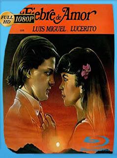 Luis Miguel Fiebre de amor 1985HD [1080p] Latino [GoogleDrive] SilvestreHD