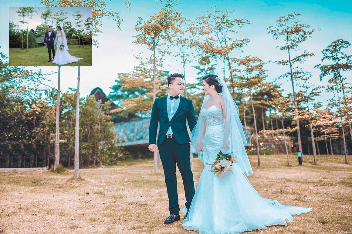 550+ Wedding Presets For Lightroom & Photoshop Free Download