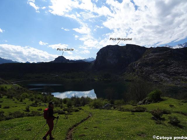 El Lago Enol en los Lagos de Covadonga.
