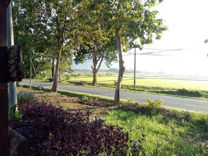 homestay di langkawi