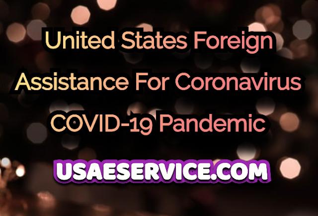 U.S. COVID-19 Pandemic
