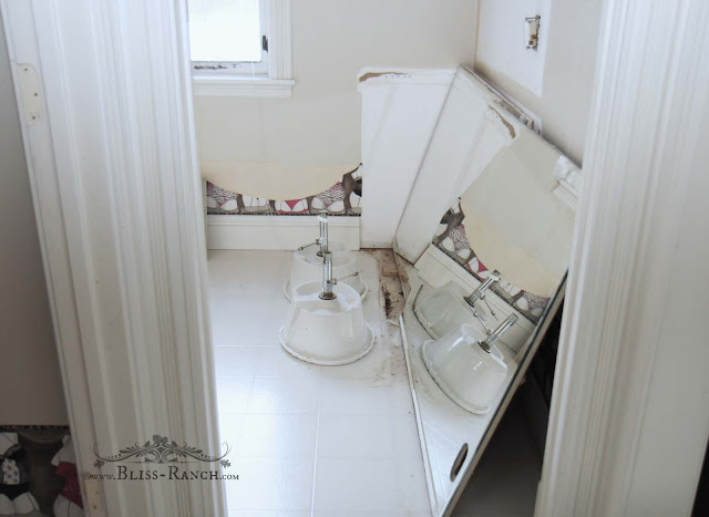 Jack & Jill Bathroom Redo Bliss-Ranch.com