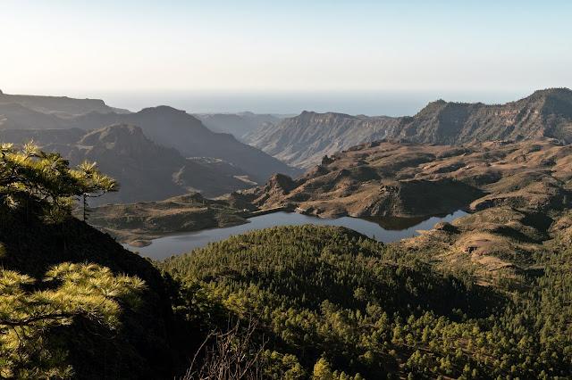 Wandern auf Gran Canaria – Von El Juncal ins Naturschutzgebiet Pajonales 12