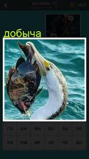 в воде птица поймала добычу и держит за хвост рыбу