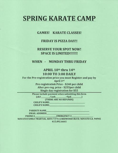 NFMA Spring Camps 2017 Flyer