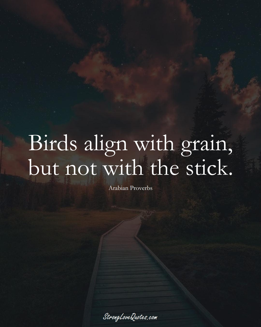 Birds align with grain, but not with the stick. (Arabian Sayings);  #aVarietyofCulturesSayings