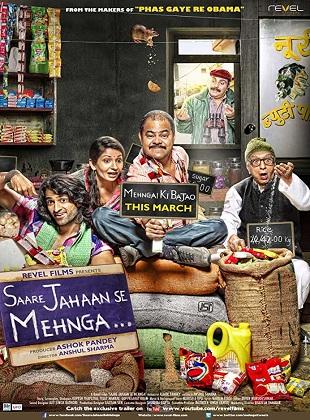 Saare Jahaan Se Mehnga 2013 Full Hindi Movie Download HDRip 720p ESub