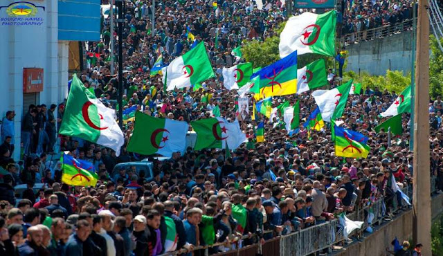 حراك الجزائر اعلام امازيغية