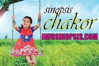 Chakor SCTV