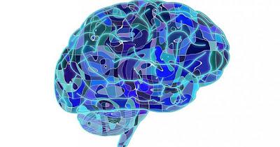 Tipos memoria  neuropsicología