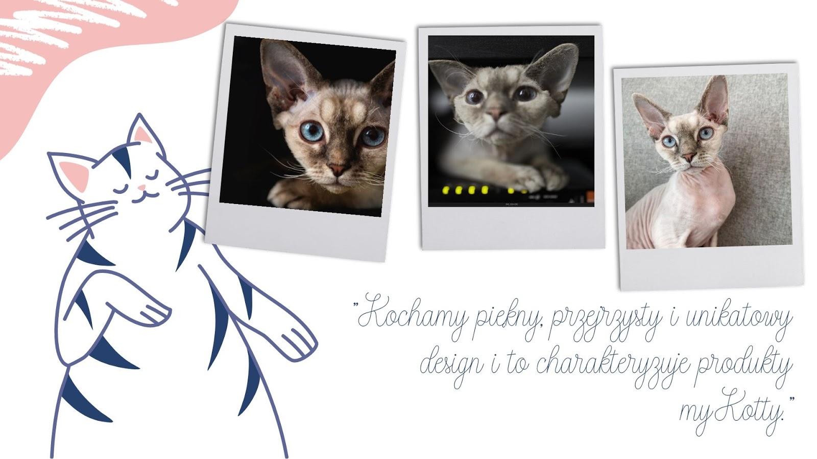 8 drapaki z tektury falistej dla kotów gdzie kupić zabawki drapaki poduszki miski wysokiej jakości dla kotów dodatki dla kociarzy torba gadżety prezent dla kota dla kociarza mykotty opinie ceny