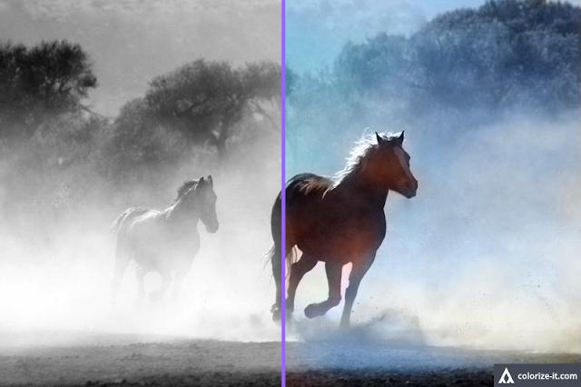 Colorize Compare Photo