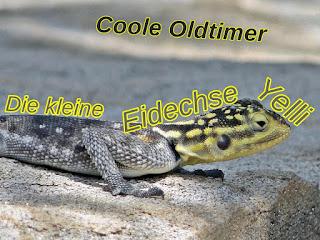 Die kleine Eidechse Yelli - Coole Oldtimer